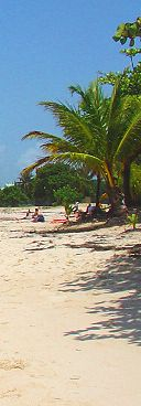 beach guadeloupe