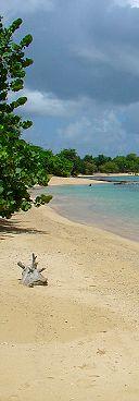 Spiaggia Guadalupa - Guadeloupe